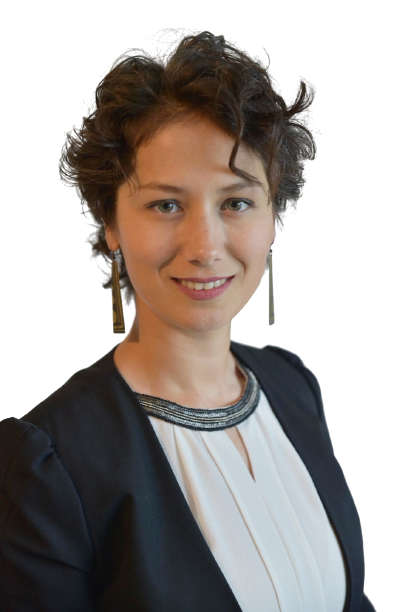 impact investing and hybrid blended deal structures online course trainer laura catana from fase