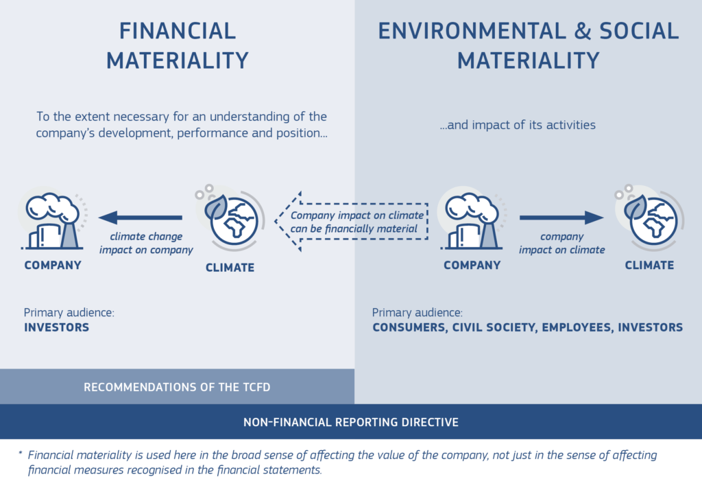 financial and environmental & social materiality in non-financial reporting directive